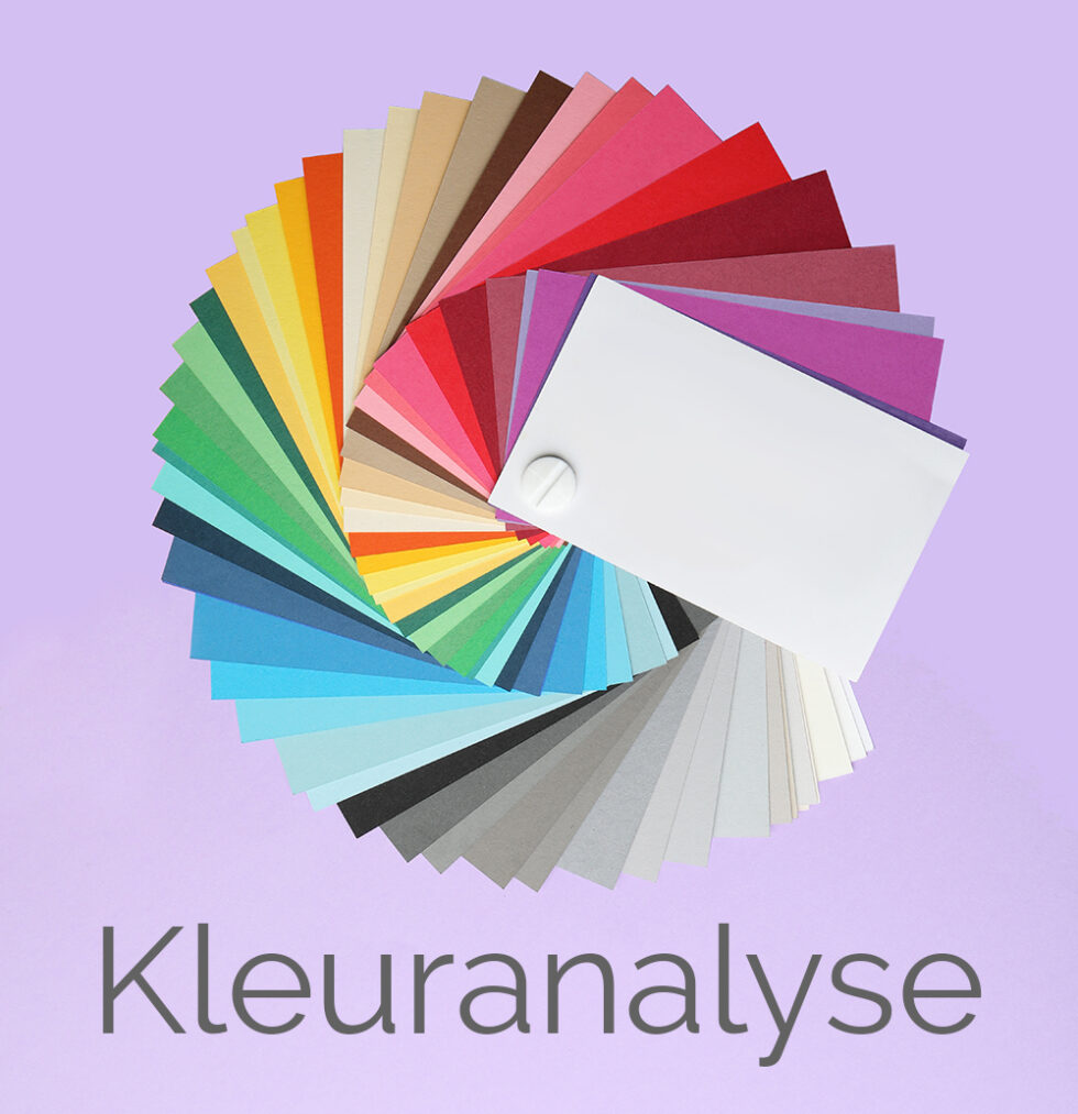 Color palette on bright background, top view
